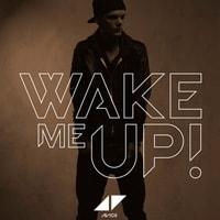 Wake Me Up Guitar Lesson - Avicii