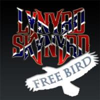 Free Bird Guitar Lesson – Lynyrd Skynyrd